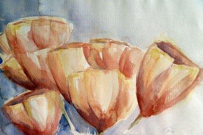 Tulpen  40 x 50 -